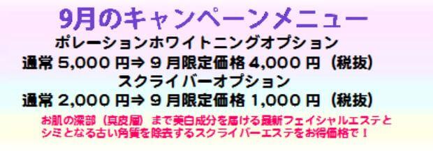 201609キャンペーンチケット